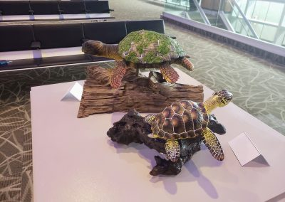 """Oakley the Green Sea Turtle"" and ""Bruce the Loggerhead Sea Turtle"" by Cara Bevan"